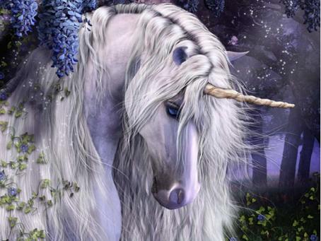 All About Unicorns