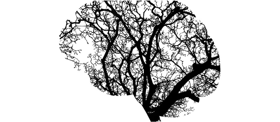 THE MIND & THE TREE OF LIFE