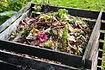 Composting Class.jpg