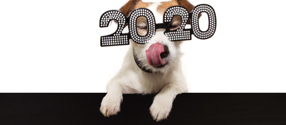 20/20 Vision Resolutions
