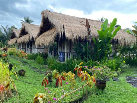 Silent Retreat in Bali