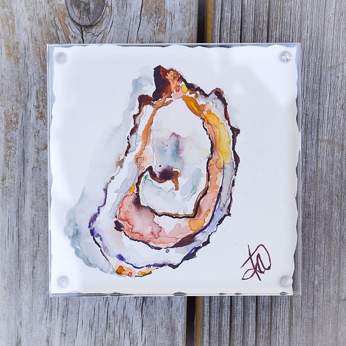 Coral Oyster 5x5 glass framed original