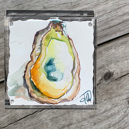 Sunrise Oyster 5x5 framed original painting