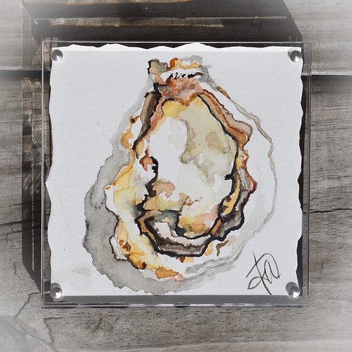5x5 beach tone oyster in glass frame