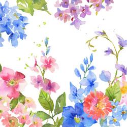 Blumen bunt