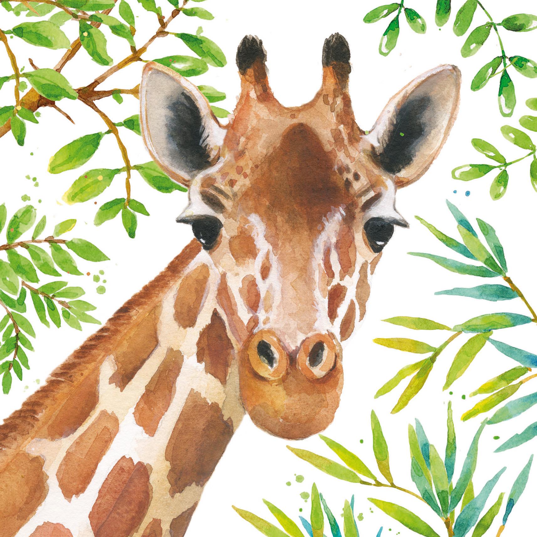 PK Giraffe