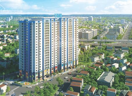 Dự án Amber Riverside 622 Minh Khai