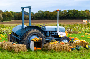 The Vintage Tractor