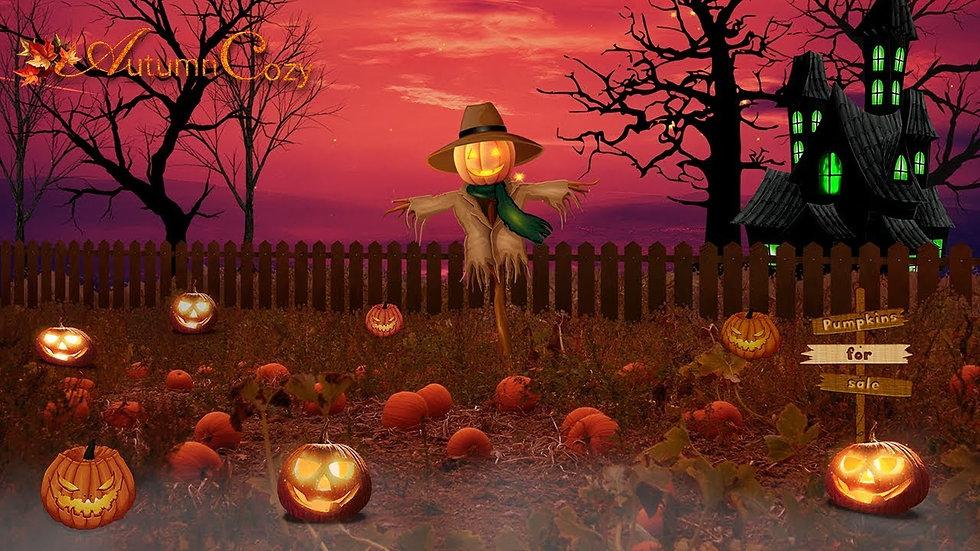 pumpkin night time website pic 2.jpg