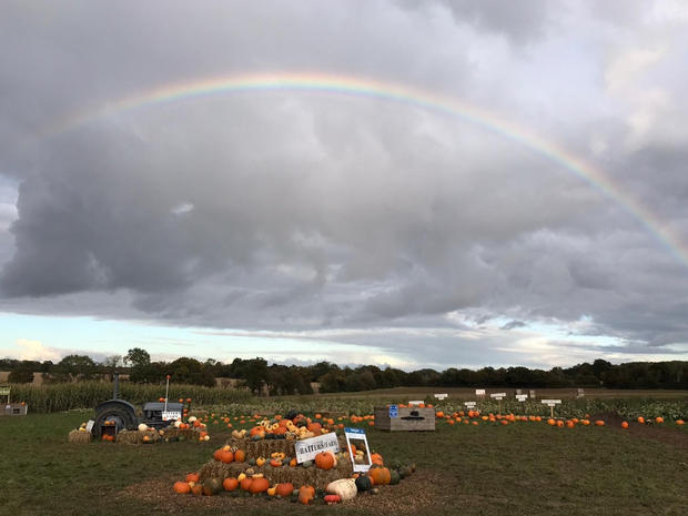 Rainbow Over The Pumpkin Patch!