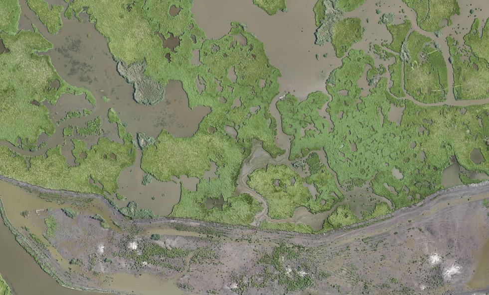Marsh Reconstruction Assessment