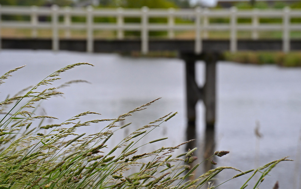 Een houten loop brug over een kanaal.