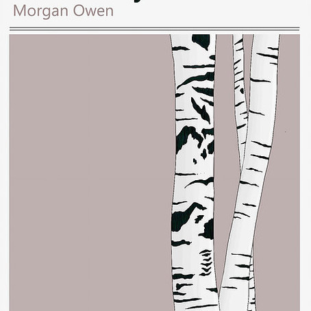 Cyhoeddiad a cherdd: Bedwen ar y Lloer - Morgan Owen