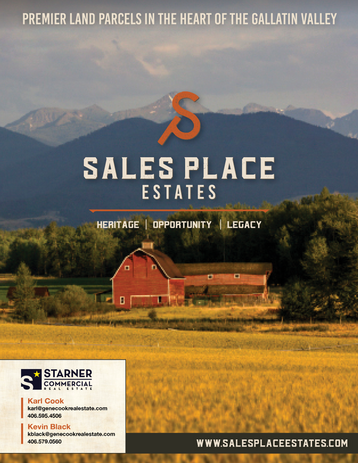 Sales Place Sales Sheet 02-18-2020.png