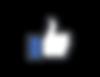 Thumb-Icon-RGB-1024.png