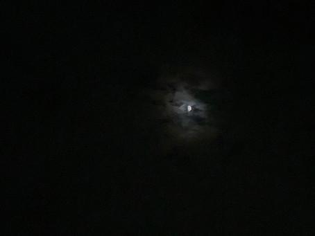 月夜の晩に
