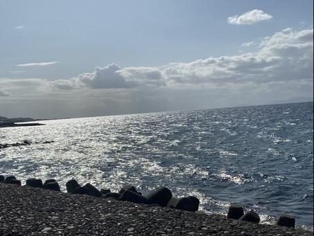 海に行きました