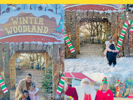A Christmas Journey: At Old MacDonalds Farm