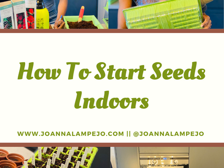 Basic Seed Sowing 101: How To Sow Seeds Indoors