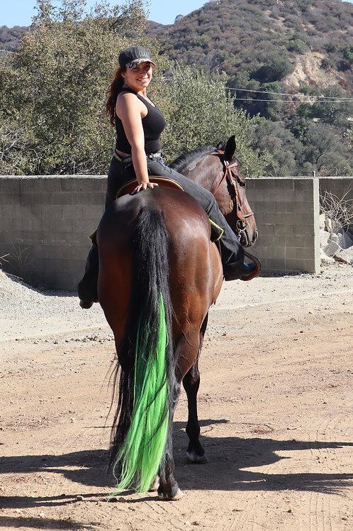 Supreme Ombre Color Equi-Tails