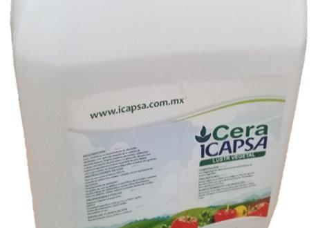Cera ICAPSA
