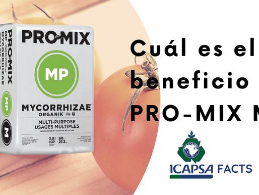 ¿Cuál es el beneficio de PRO-MIX MP?