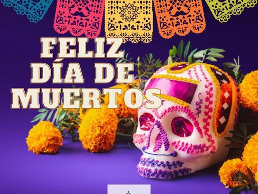 ICAPSA les desea un Feliz Día de Muertos! 🎆👻💀
