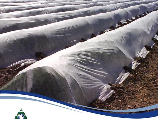 Beneficios de la Agromanta