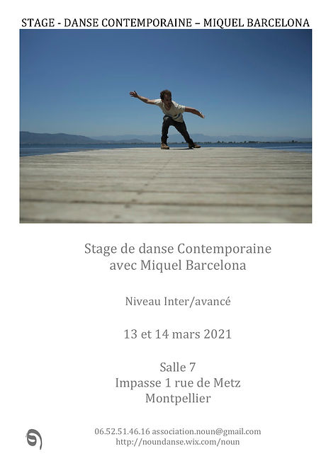 STAGE Miquel Visuel Noun Danse.jpg