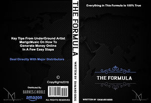 The-Formula-Book-Cover-1.jpg