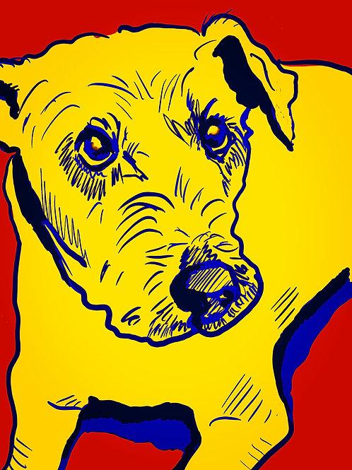 "Pop Art Winslow - 16"" x 20"" Print"