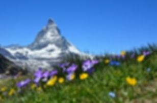 Matterhorn small.jpg