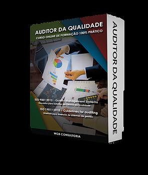 Box-padrão-auditor-da-qualidade.png