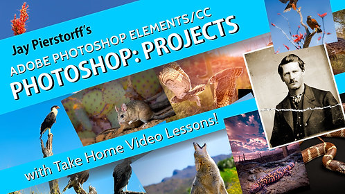 Projects: for Photoshop Elements/CC with Take Home Video Lessons
