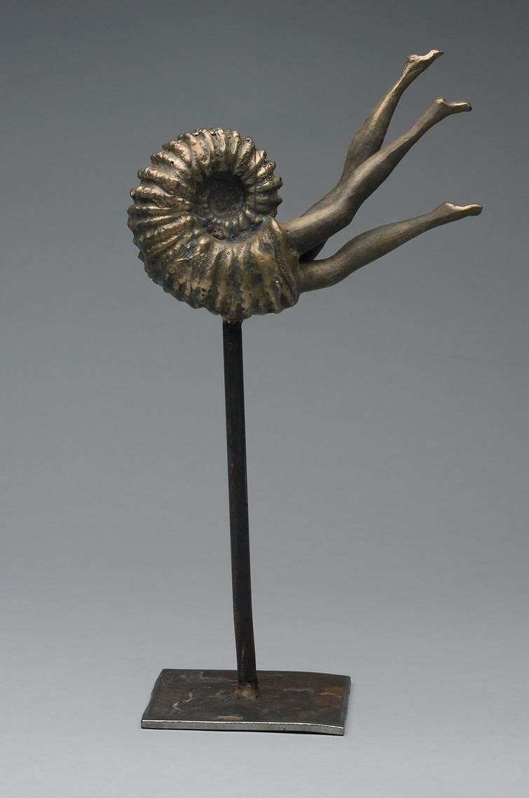 Ammonite flight