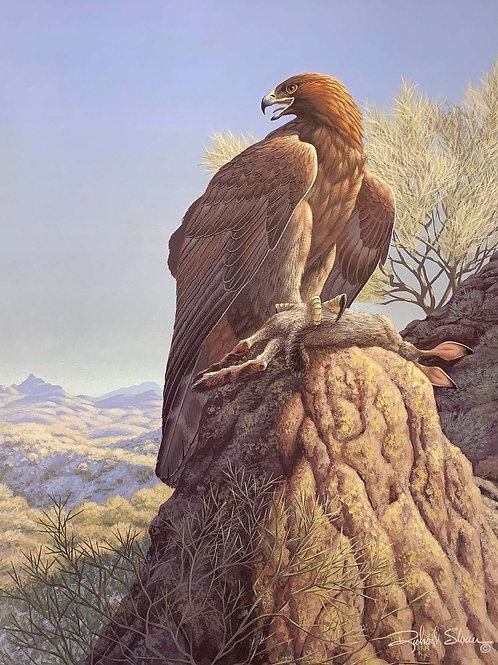 Golden Eagle by Richard Sloan