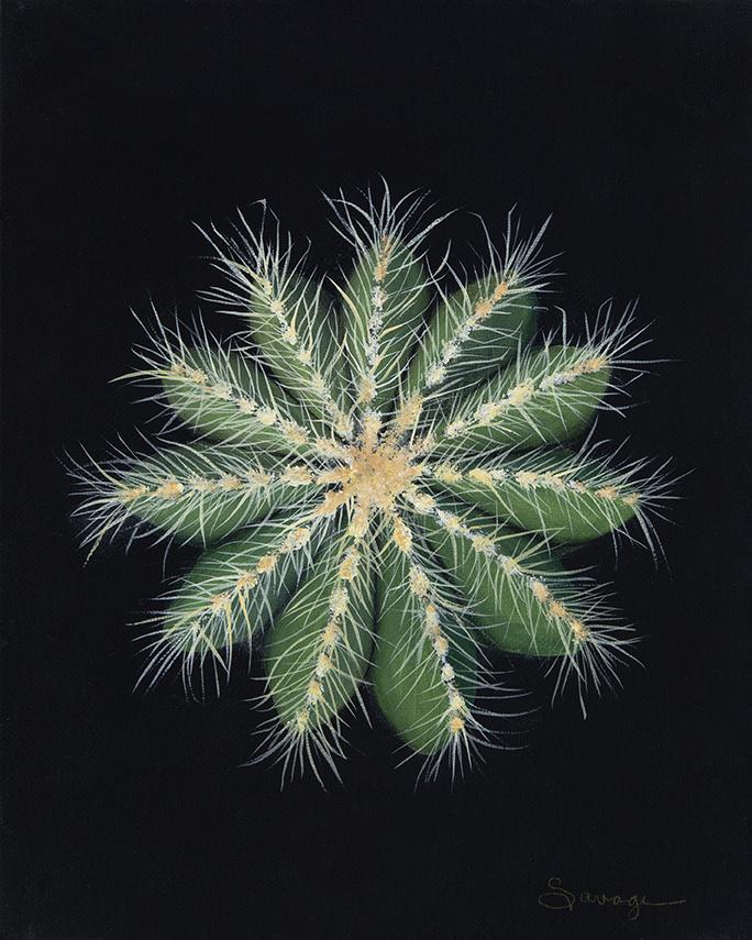 CS2 Balloon Cactus