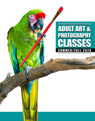 Parrot-with-Brush-A.jpg