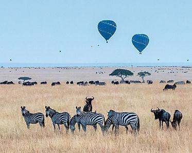 Luxury Safari Photo. The Conte Club a Luxury Travel Company