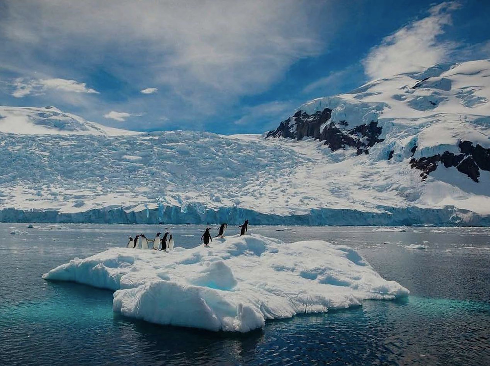 Antarctica scenery with penguins
