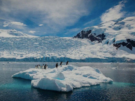 Luxury Antarctica Adventure