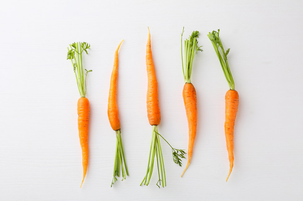 Canva - carrots on white background.jpg