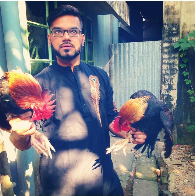 Muharram Cockerels