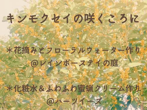 9/14,16,18,19  キンモクセイの咲くころに ~花の香りを楽しむ時間~