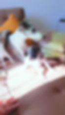 Lumii_20200429_173718383_resized.jpg