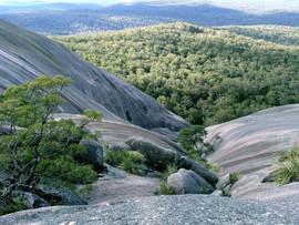 1539097-nature_boundaustralia1lg.jpg