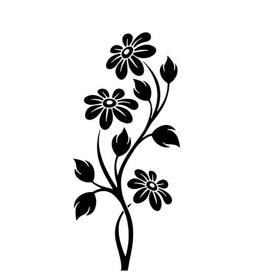 Three Daisies (1051)