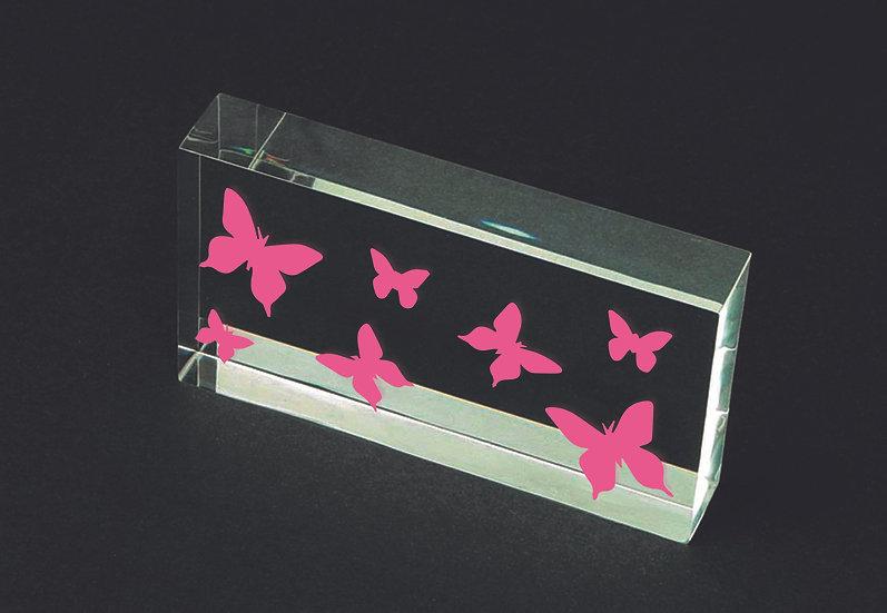 XS Butterfly 10x21cm (2023)
