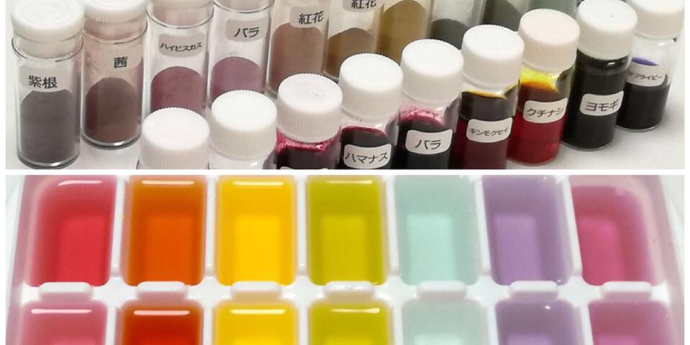 【WEBセミナー】カラム抽出応用編 ~濃縮色素・粉末色素を作る~