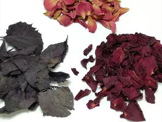 「真空乾燥で花やハーブを乾燥・保存する」